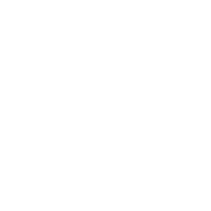 6 снежинок<br>19х12 см.